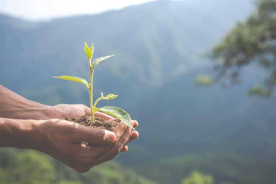 Impact écologique