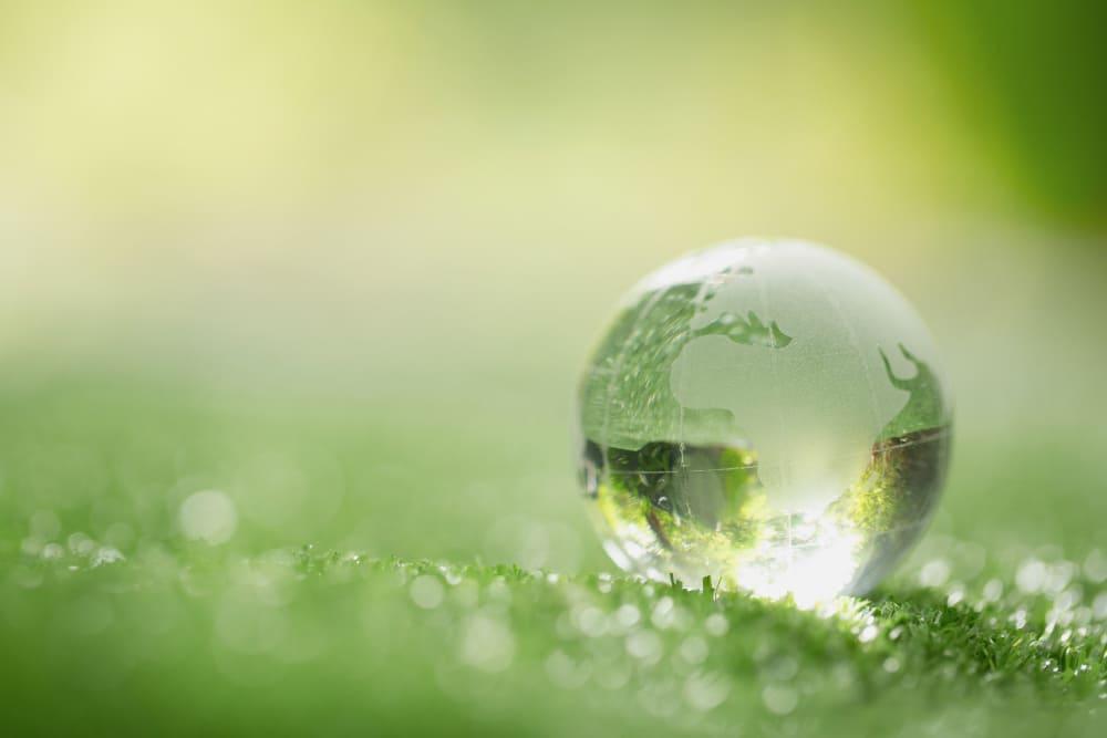 environnement et écologie